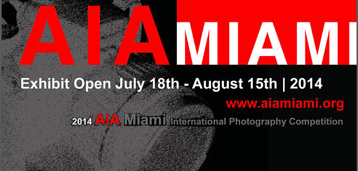2014 AIA Miami International Photography Competition